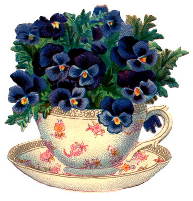 teacup-pansy-vintage-image-graphics-fairy